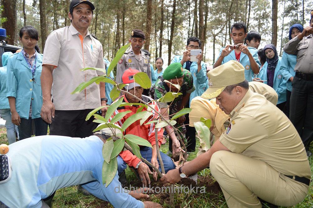 Mencintai Alam, Mahasiswa KKN UNS Tanam Pohon