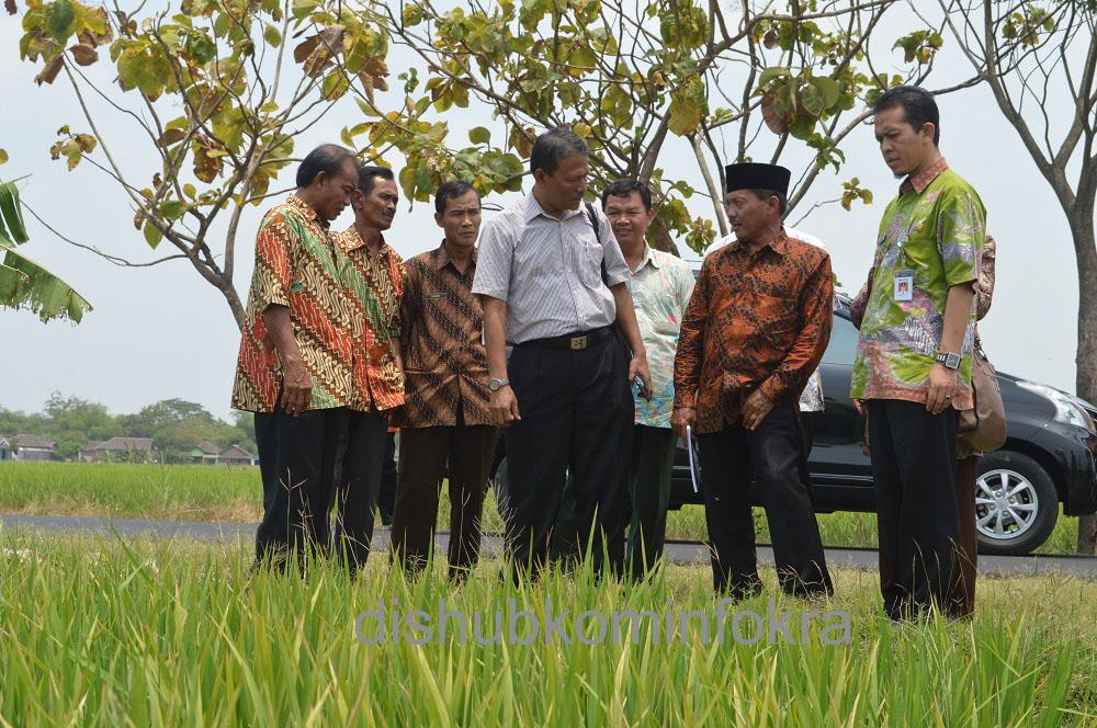 Tim juri GP3A saat tinjauan lapangan di lahan persawahan Tirta Manunggal Karsa, di Desa Pulosari, Kecamatan Kebak Kramat, Kamis (23/10) pagi