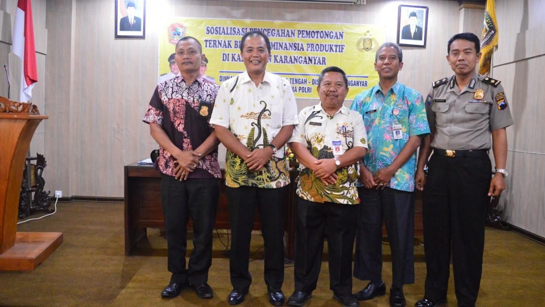 Jaga Kelestarian Populasi Sapi Di Kabupaten Karanganyar, Disnakan Larang Pemotongan Sapi Betina Produktif