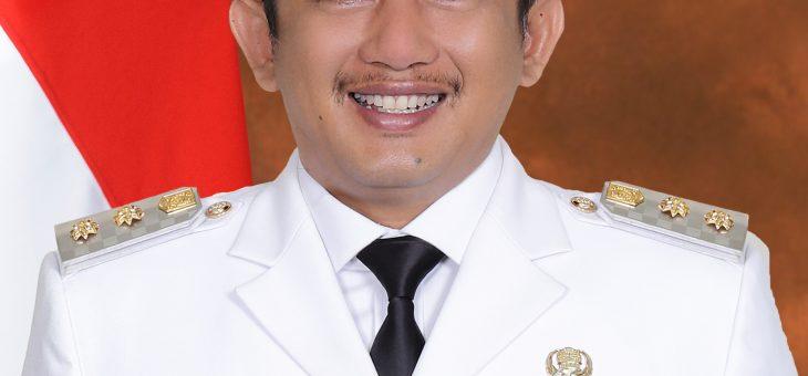 Profil Wakil Bupati